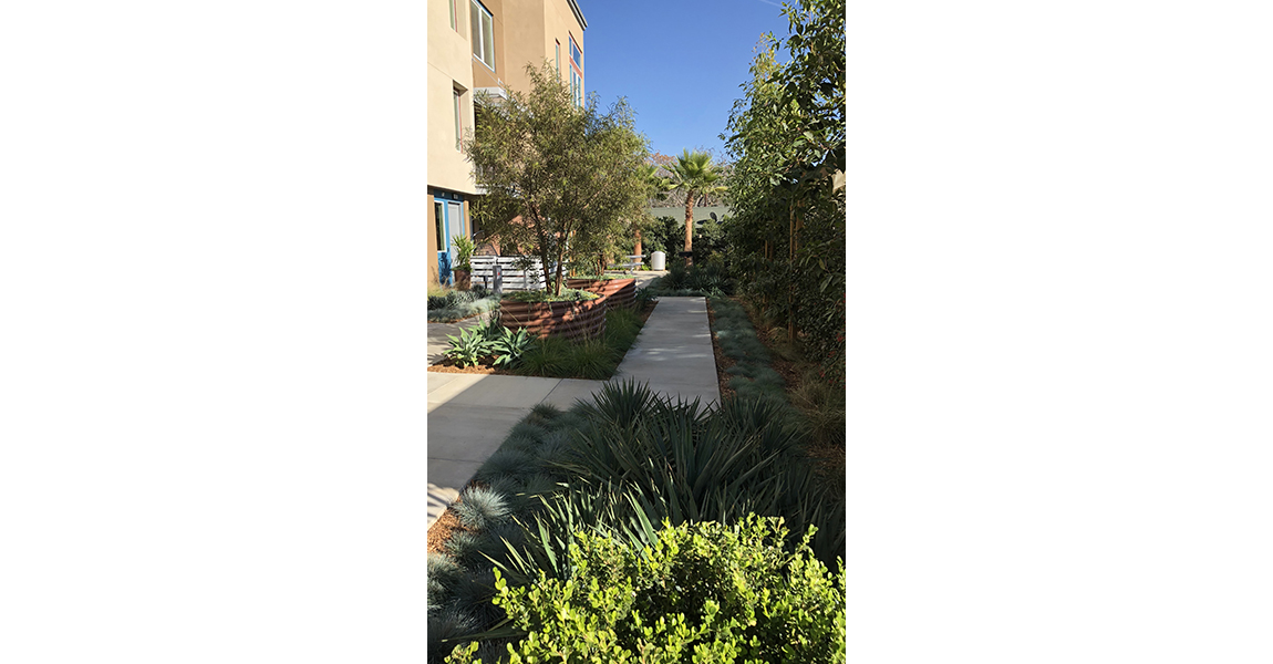 Sidewalk with green plants on each side and buidling to the left side